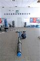 大流量高揚程潛水泵價格及廠家