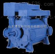 SZB SK SKF 2BV 2BE旋片真空泵 水环真空泵