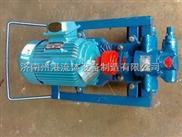 微型齿轮泵,小型齿轮泵,齿轮泵,泵