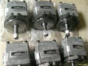 特销IPH-36B-10-100-11不二越双联齿轮泵