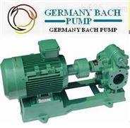 进口齿轮油泵_德国设备/厂家、价格