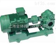 大流量齿轮泵 进口大流量齿轮泵