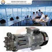 進口高溫磁力泵(原裝進口高溫磁力泵)